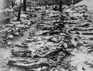 Katyn Massacre - remains of Polish Officers