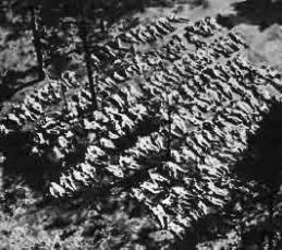 Mass Grave of Polish Officers slaughtered by the NKVD at Katyn