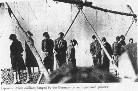 Polish civilians hanged by the Nazis